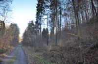 Dolina Udorki-3