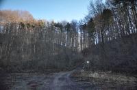 Dolina Udorki-4