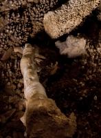 Jaskinia Zawał-7