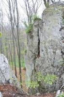 Rezerwat Pazurek-16