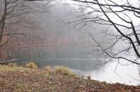 Spacer po okolicach Złotego Potoku - 1.01.2014